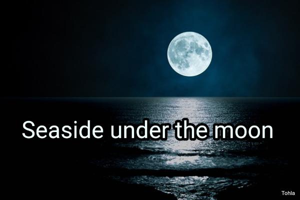 Seaside under the moon